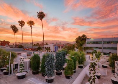 Cielo Verde Rooftop Farm, West Hollywood