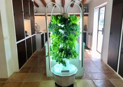aeroponic-tower-garden-EU