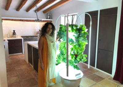 tower-garden-for-European-homes
