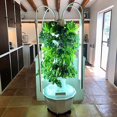 Growing On Tower Garden Indoors Indoor Tower Garden Led