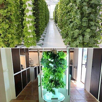 Quelle est la différence entre une Tower Garden® est une Tower Farm?