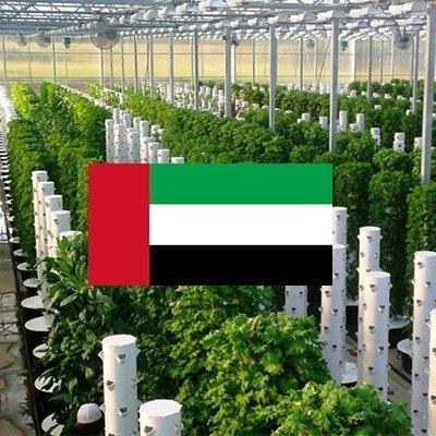 Thank you Dubai for being Dubai!