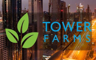 Tower Farm in Abu Dhabi