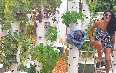 Tower Garden technology for Vertical Gardens & Vertical farms