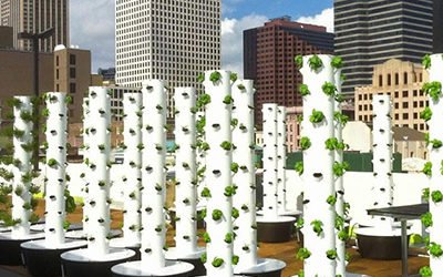 Tower Garden & Urban Farming
