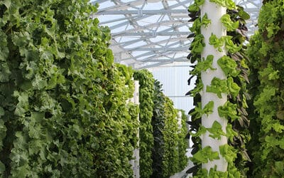 Tower Garden in Germany