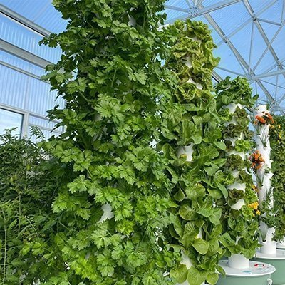 How much does the Tower Garden cost?