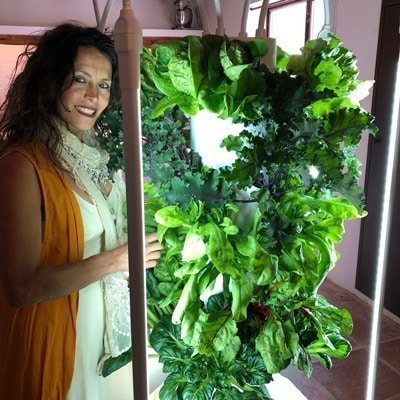 Ordering Tower Garden in the UK (England, Northern Ireland, Scotland, and Wales.)