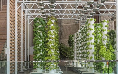 Artificial light requirements for indoor Tower Farm