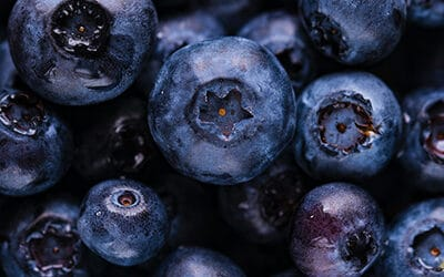 Do Blueberries and Raspberries Grow on a Tower Garden?